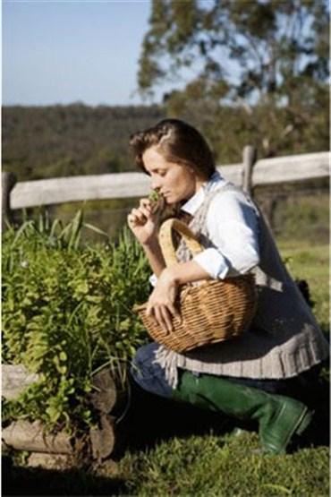 Şifalı bitki tozları nasıl zayıflatıyor?